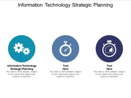 Information Technology Strategic Planning Ppt Powerpoint Presentation Visuals Cpb