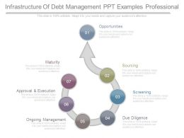 Infrastructure Of Debt Management Ppt Examples Professional