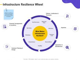 Infrastructure Resilience Wheel Robustness Ppt Powerpoint Presentation Summary Template