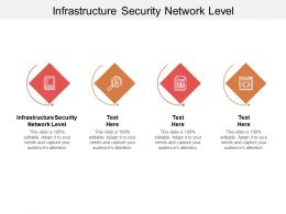 Infrastructure Security Network Level Ppt Powerpoint Presentation Layouts Aids Cpb