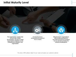 Initial Maturity Level Ppt Summary Example Introduction