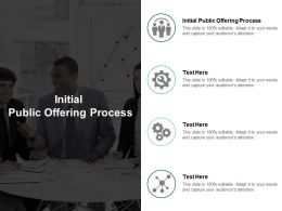 Initial Public Offering Process Ppt Powerpoint Presentation Styles Show Cpb