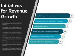 Initiatives For Revenue Growth Powerpoint Show