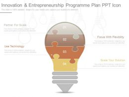 Innovation And Entrepreneurship Programme Plan Ppt Icon