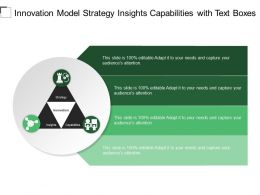 Innovation Model Strategy Insights Capabilities With Text Boxes