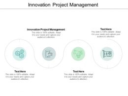 Innovation Project Management Ppt Powerpoint Presentation Themes Cpb