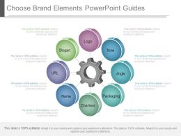 Innovative Choose Brand Elements Powerpoint Guides
