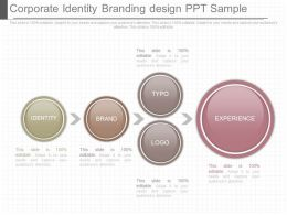 Innovative Corporate Identity Branding Design Ppt Sample