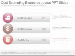Innovative Cost Estimating Examples Layout Ppt Slides