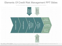 Innovative Elements Of Credit Risk Management Ppt Slides