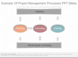 Innovative Example Of Project Management Processes Ppt Slides