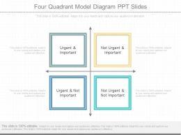 Matrix diagrams powerpoint presentation diagrams and templates innovativefourquadrantmodeldiagrampptslidesslide01 toneelgroepblik Images