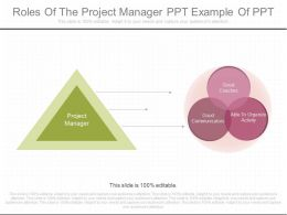 Innovative Roles Of The Project Manager Ppt Example Of Ppt