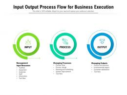 Input Output Process Flow For Business Execution