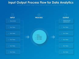 Input Output Process Flow For Data Analytics