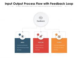 Input Output Process Flow With Feedback Loop