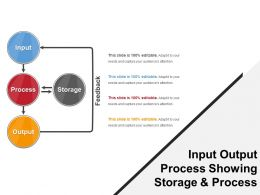 Input Output Process Showing Storage And Process