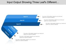 Input Output Showing Three Leafs Different Direction