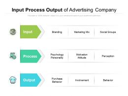 Input Process Output Of Advertising Company