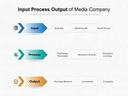 Input Process Output Of Media Company