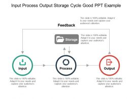 Input Process Output Storage Cycle Good Ppt Example