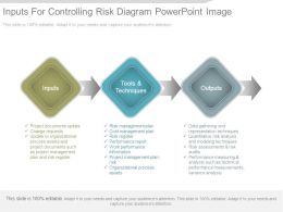 Inputs For Controlling Risk Diagram Powerpoint Image