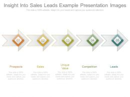 Insight Into Sales Leads Example Presentation Images