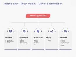 Insights About Target Market Market Segmentation Business Handbook Ppt Powerpoint Presentation