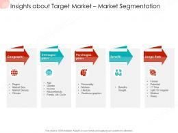 Insights About Target Market Market Segmentation Business Procedure Manual Ppt Slides Example