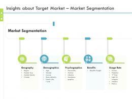 Insights About Target Market Market Segmentation Firm Guidebook Ppt Grid