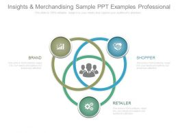 Insights And Merchandising Sample Ppt Examples Professional