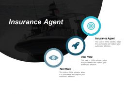 Insurance Agent Ppt Powerpoint Presentation Gallery Layout Ideas Cpb