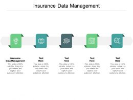 Insurance Data Management Ppt Powerpoint Presentation Gallery Objects Cpb