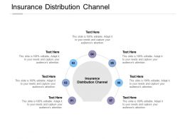 Insurance Distribution Channel Ppt Powerpoint Presentation Ideas Objects Cpb