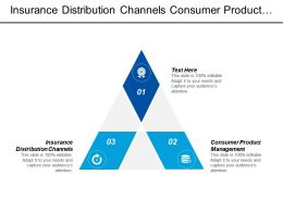 Insurance Distribution Channels Consumer Product Management Corporate Turnaround Strategy Cpb