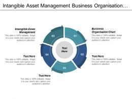 Intangible Asset Management Business Organisation Chart Buyer Negotiation Cpb