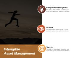 Intangible Asset Management Ppt Powerpoint Presentation Gallery Information Cpb