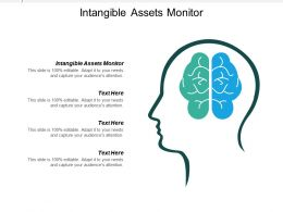 Intangible Assets Monitor Ppt Powerpoint Presentation Ideas Show Cpb