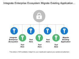 Integrate Enterprise Ecosystem Migrate Existing Application Established Transition Process
