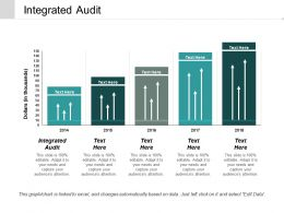 Integrated Audit Ppt Powerpoint Presentation Infographics Layout Ideas Cpb