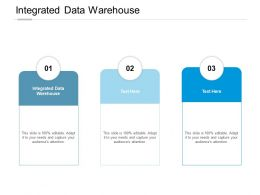 Integrated Data Warehouse Ppt Powerpoint Presentation File Shapes Cpb