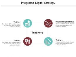 Integrated Digital Strategy Ppt Powerpoint Presentation Gallery Sample Cpb