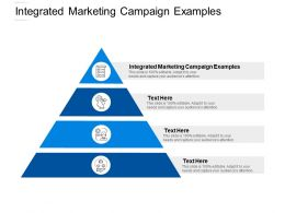 Integrated Marketing Campaign Examples Ppt Powerpoint Presentation Outline Cpb