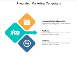 Integrated Marketing Campaigns Ppt Powerpoint Presentation Icon Brochure Cpb
