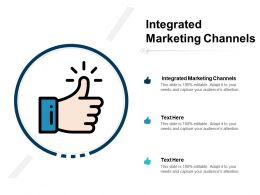 Integrated Marketing Channels Ppt Powerpoint Presentation Infographic Template Ideas Cpb