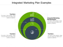Integrated Marketing Plan Examples Ppt Powerpoint Presentation Icon Gallery Cpb