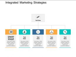 Integrated Marketing Strategies Ppt Powerpoint Presentation File Designs Download Cpb