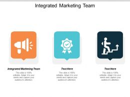 Integrated Marketing Team Ppt Powerpoint Presentation Inspiration Cpb