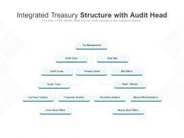 Integrated Treasury Structure With Audit Head