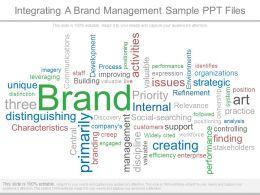 Integrating A Brand Management Sample Ppt Files